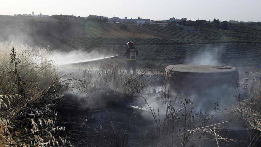 El alcalde de Montilla reclama el «desbroce» de solares para evitar incendios