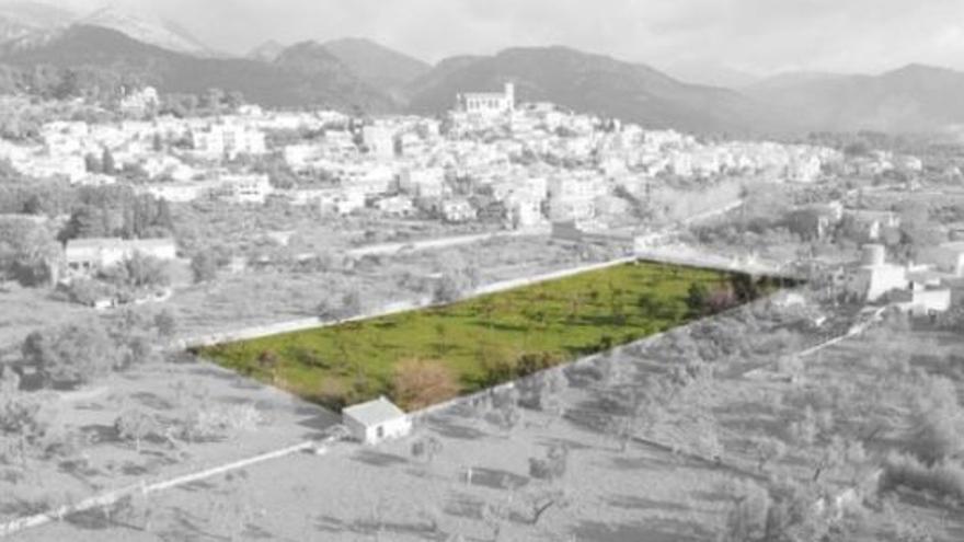 Selva instalará el punto verde en un solar rústico ubicado en la entrada