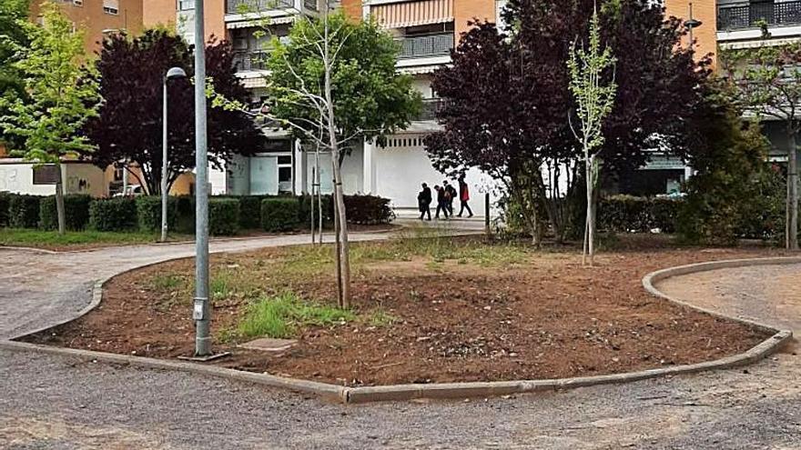 Vecinos de Sagunt denuncian la eliminación de zonas de arbustos
