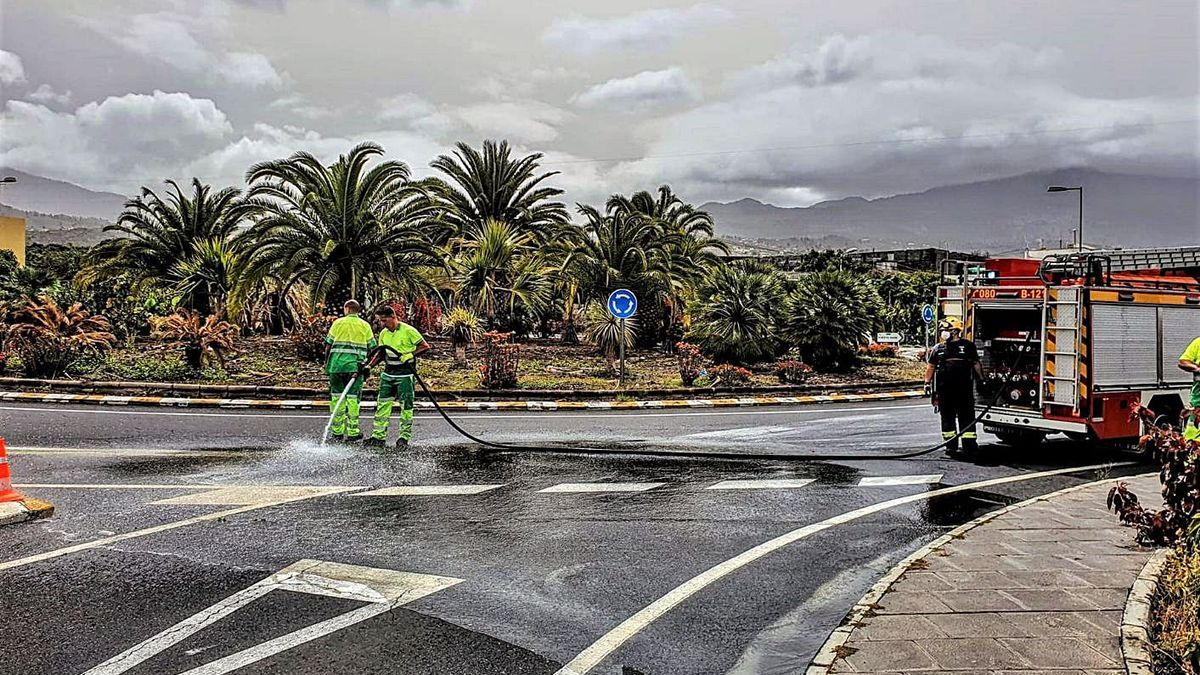 Operarios desarrollando trabajos de limpieza en una vía palmera.