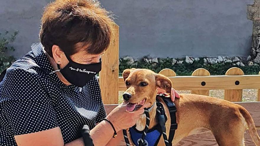Na Poli, la perra 'influencer'  de la alcaldesa