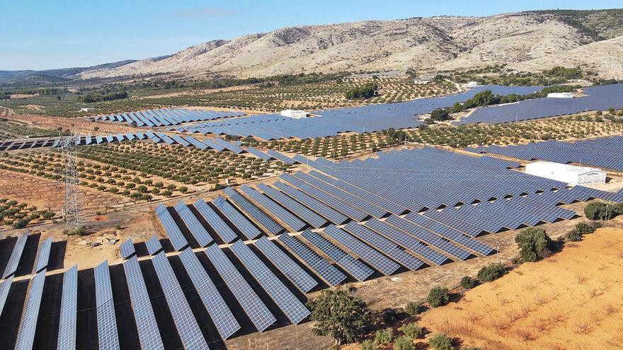 Los ecologistas ultiman alegaciones a los 11 proyectos de plantas solares del Vinalopó