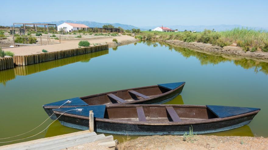 Comienza el estudio sedimentario del Delta del Ebro para frenar su deterioro