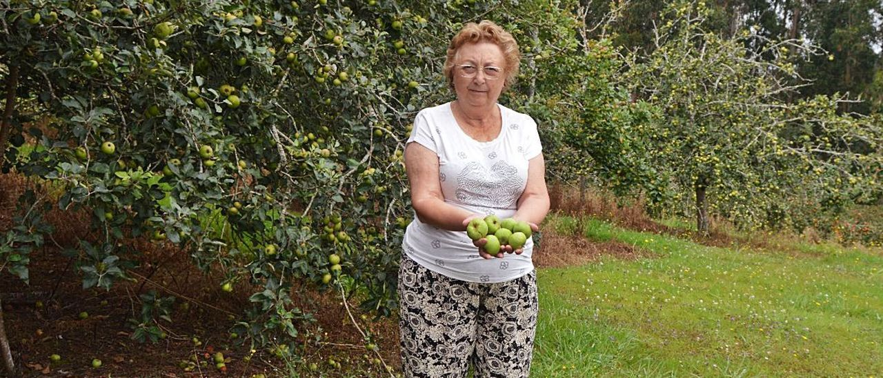 Elvira Obaya, con varias manzanas de sidra en la mano. | O. P.
