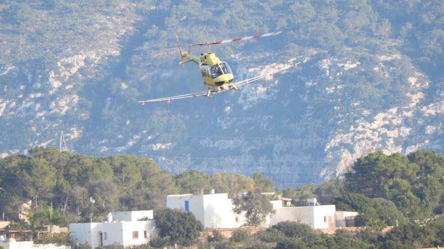 Sanz pide repetir la fumigación aérea contra la procesionaria en Formentera