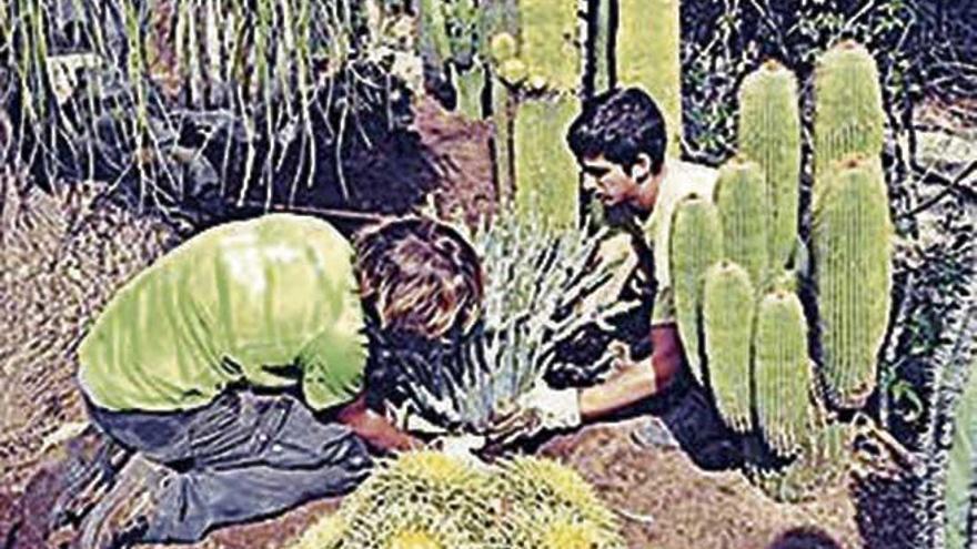 El Govern aporta casi 50.000 euros al Jardín Botánico de Sóller