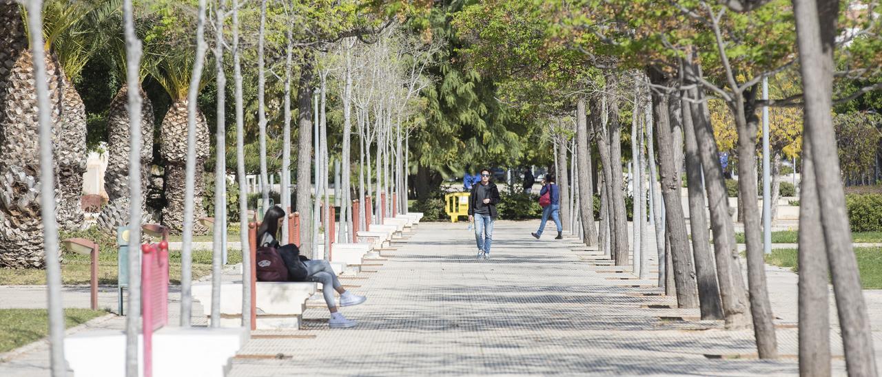 Imagen de la Universidad de Alicante