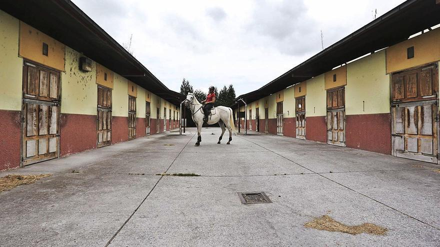 Oviedo reabrirá el centro hípico de El Asturcón