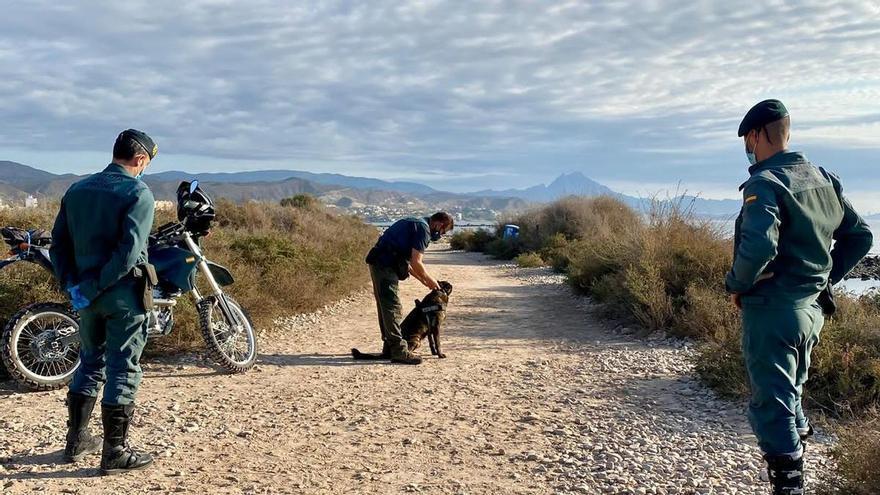 La Guardia Civil rastrea la cala de perros por las denuncias de envenenamientos en El Campello