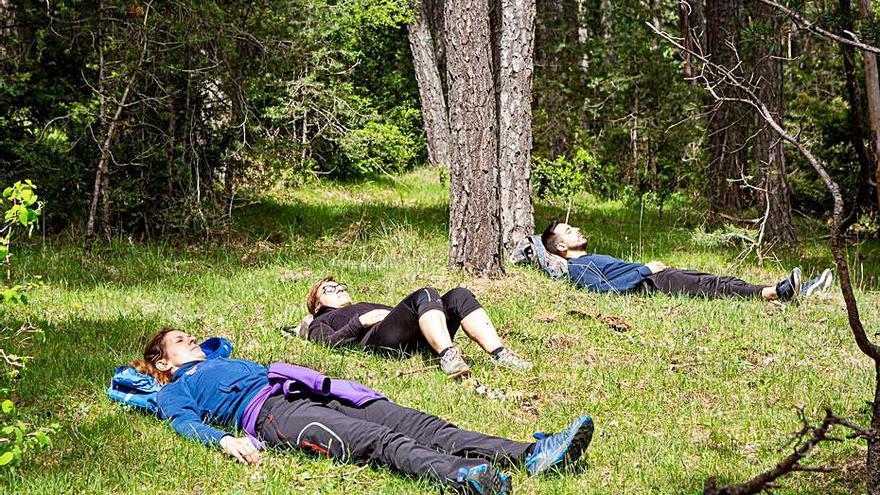 Senderisme espiritual als boscos de Capolat
