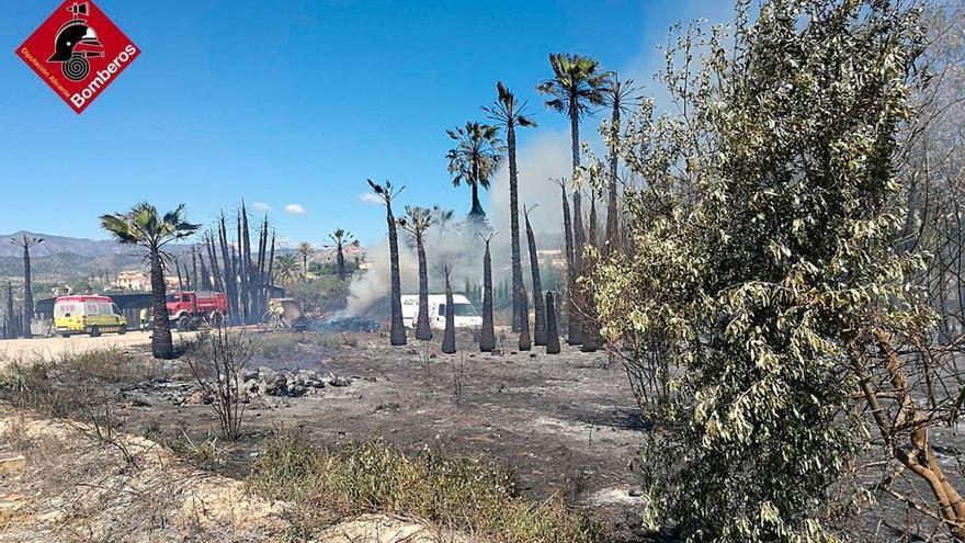 Un incendio de matorral y palmeras en La Vila deja un herido y diez personas evacuadas