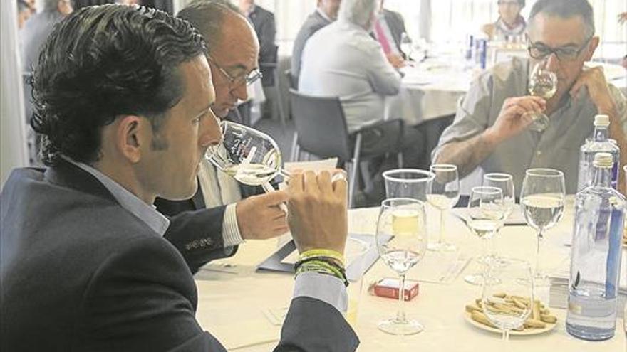 Más de 300 vinos de España y Portugal compiten por los premios Mezquita