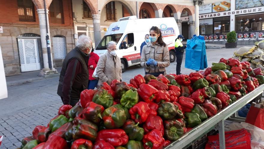 Comienza la Feria del Pimiento de Benavente con la participación de 8 hortelanos