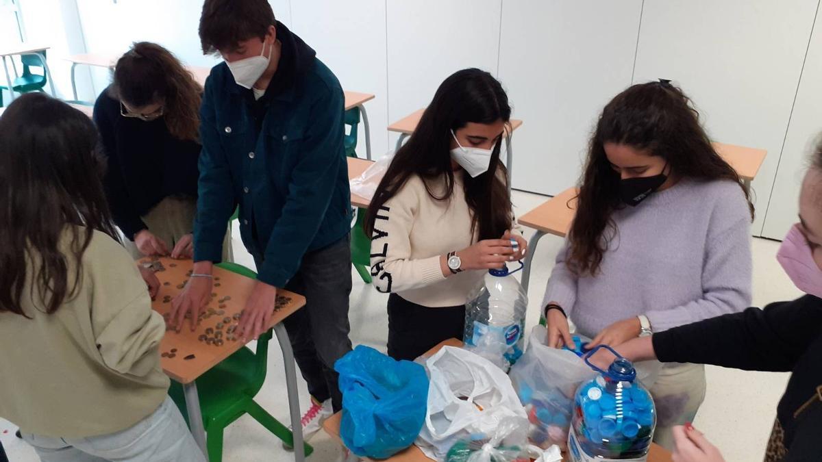Alumnos de los centros ELIS llevando a cabo la recogida de tapones de plástico