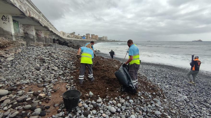 Retiran 300 kilos de seba de la playa de San Cristóbal