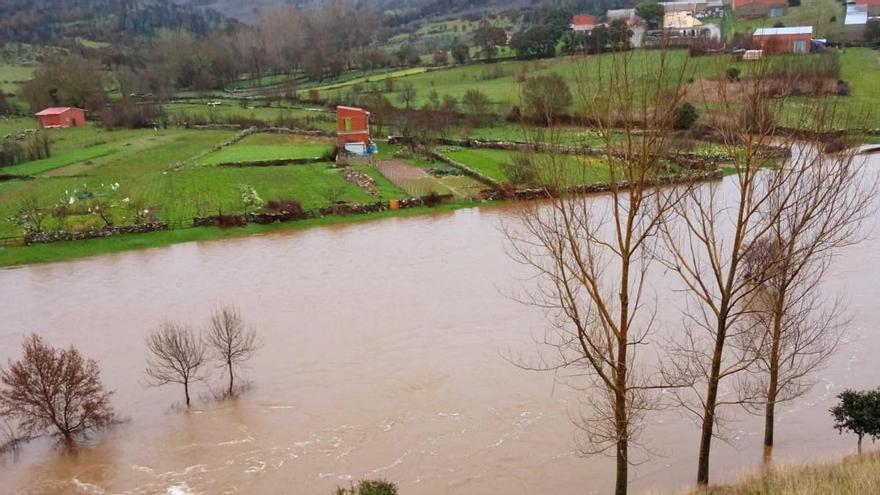 El río Aliste, a punto de saltar el antiguo puente de Domez de Alba