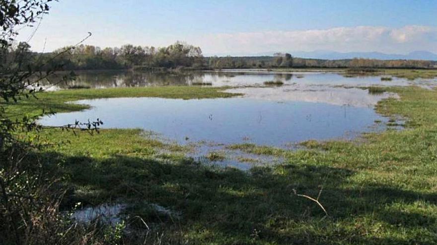 Cassà estableix una reserva de caça a Esclet