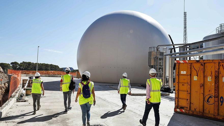 El contenedor marrón llega a Ibiza