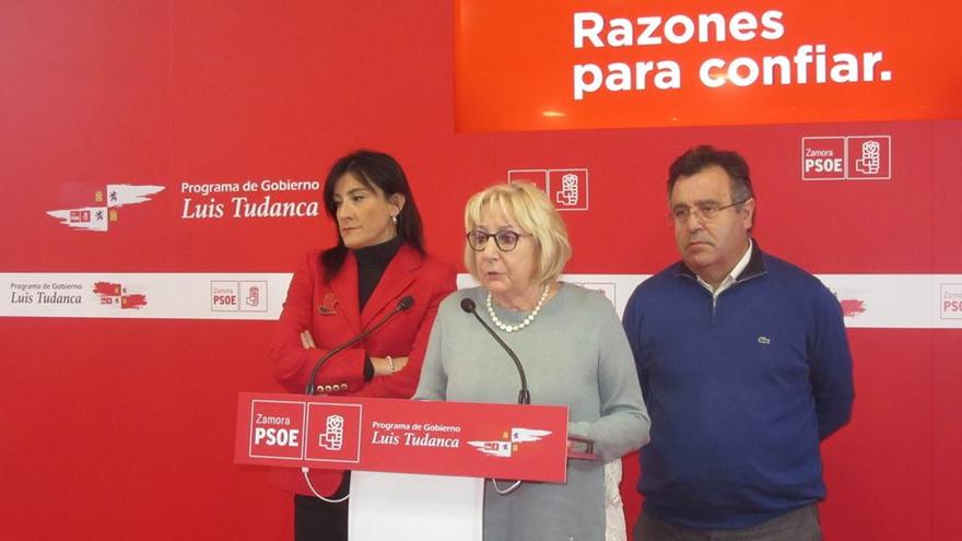 El PSOE pide a la Junta líneas de ayudas directas para los afectados por el incendio de Aliste y Alba