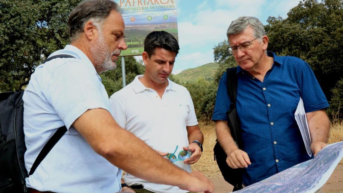 Urbanismo limitará la entrada de tráfico rodado a El Patriarca