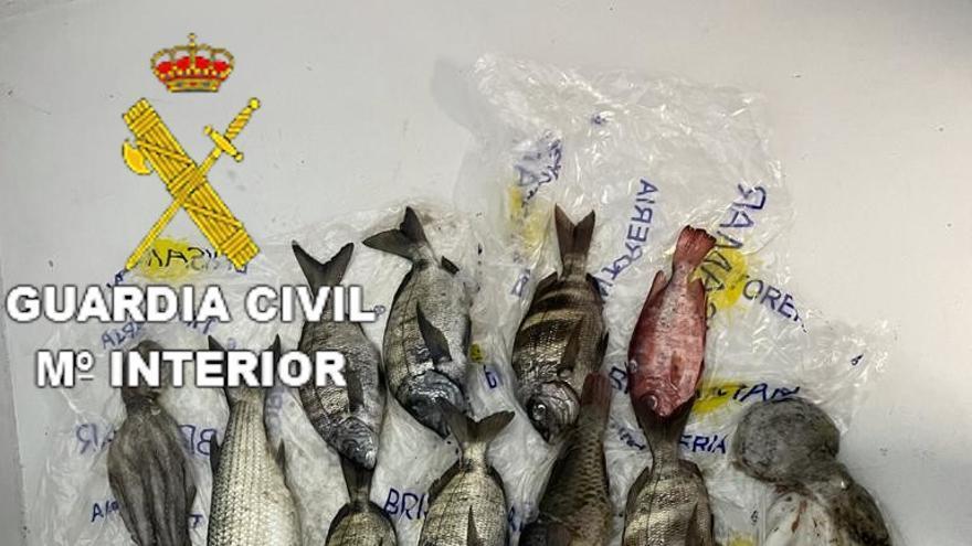 Denunciadas tres personas en Gran Canaria por realizar pesca submarina en una zona prohibida