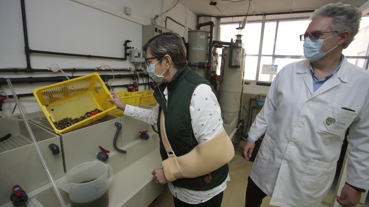 Rosa Quintana, conselleira do Mar, en su visita a las instalaciones del Centro de Investigacións Mariñas.