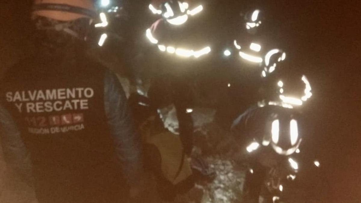Imagen del rescate facilitada por bomberos.