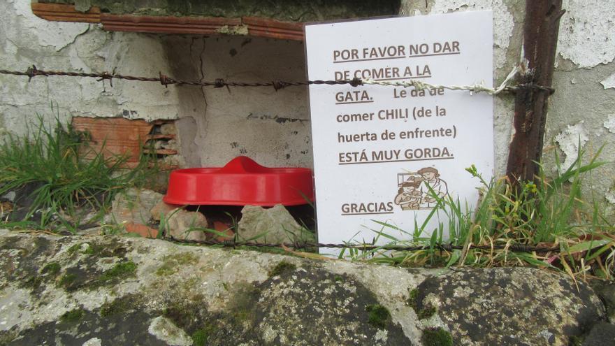 Los originales y sorprendentes carteles con los que en Cangas de Onís piden civismo con los animales