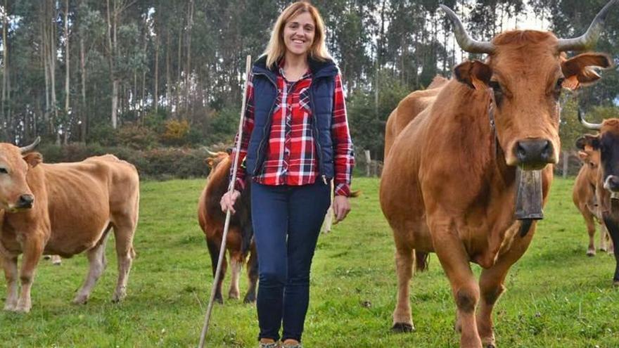 Asturias alegará contra el veto a ganaderías a menos de 500 metros de pueblos
