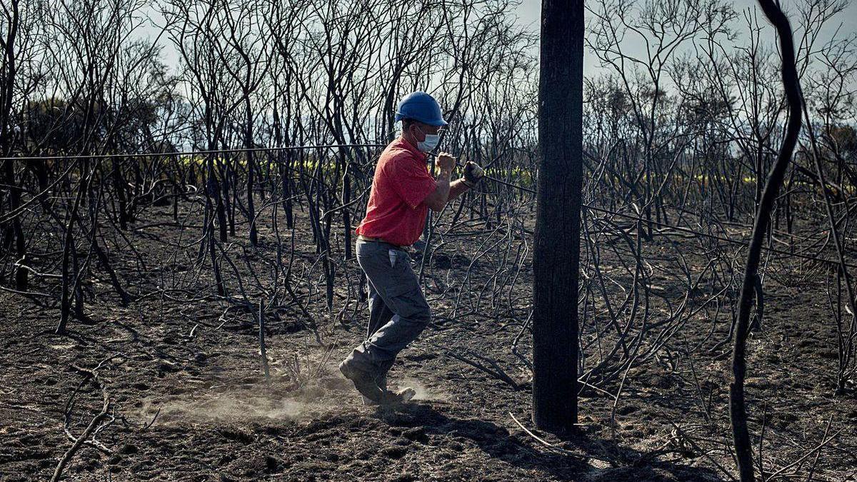 Un operario restablece la conexión de fibra tras el incendio en Monterrei (Ourense).