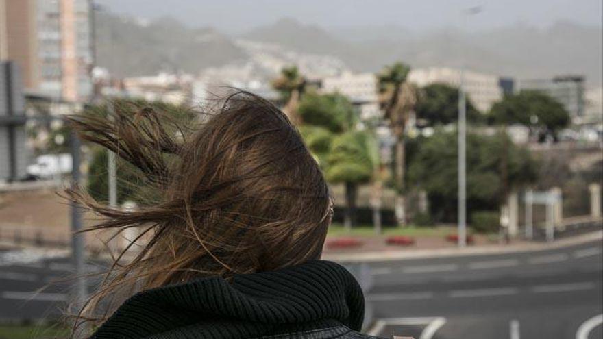Las altas temperaturas tenderán a bajar en Canarias en un jueves ventoso