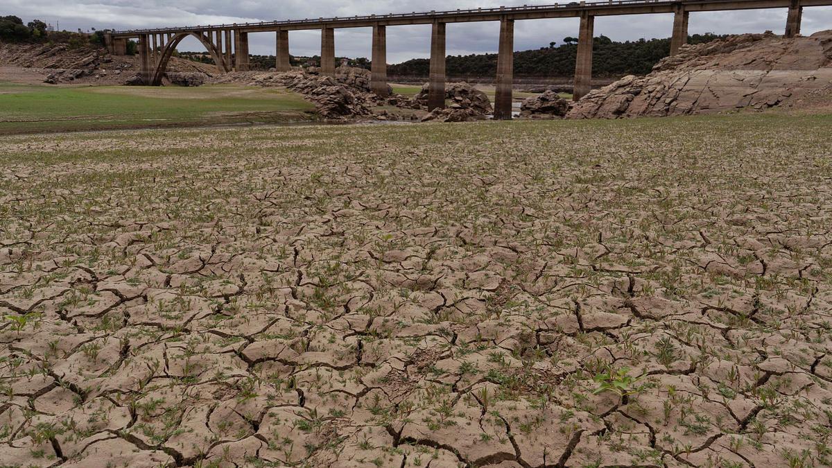 El embalse del Esla ayer en la zona del puente de la Estrella, entre Montamarta y Perilla de Castro, completamente seco.