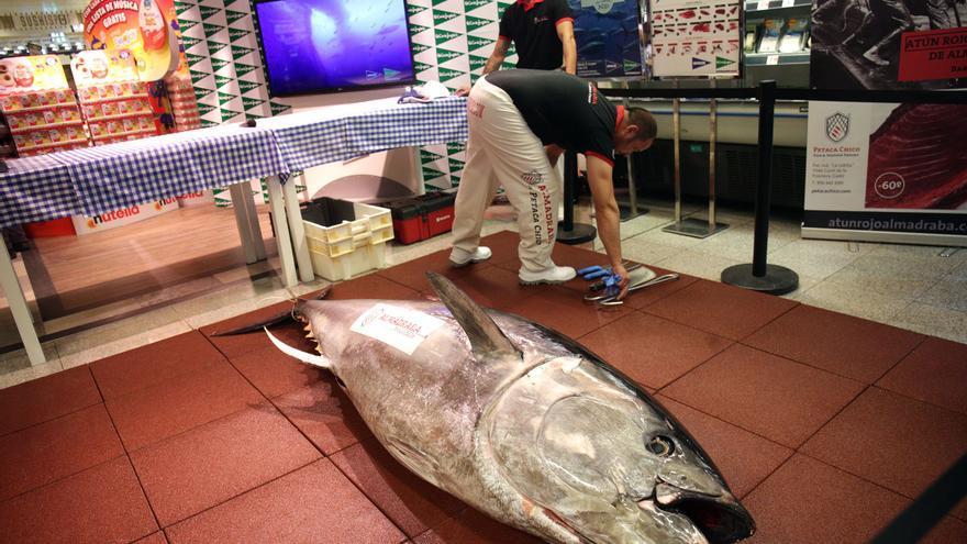 Pescadores de artes menores de la Comunitat reclaman más cuota de atún rojo