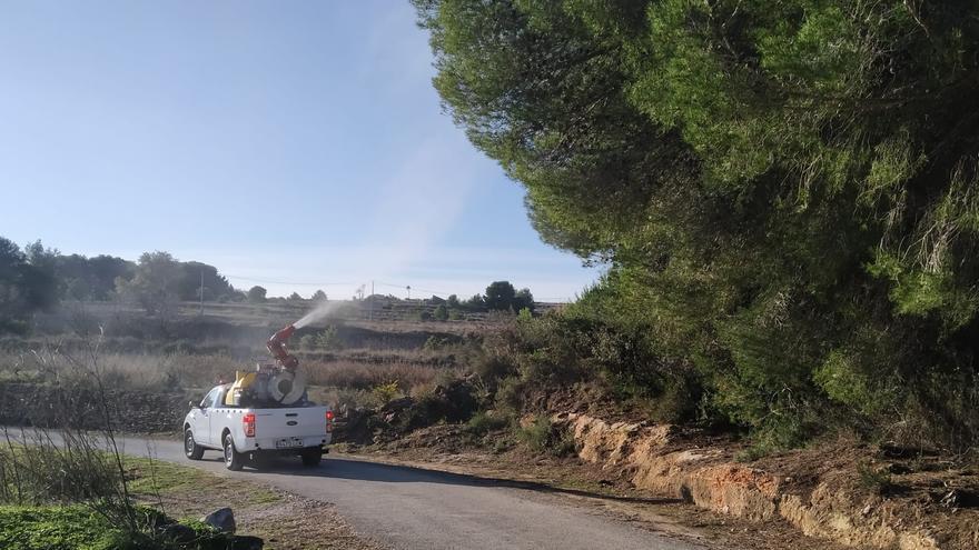 Una 'nube' ecológica para acabar con la procesionaria