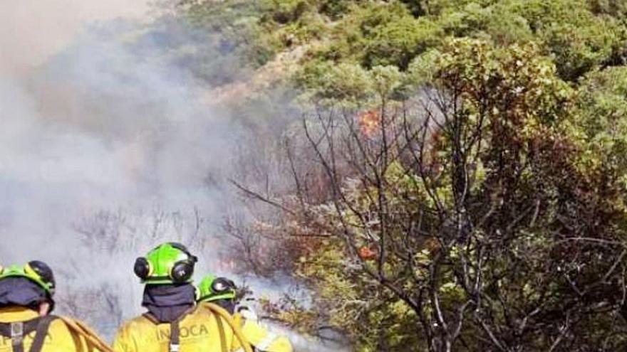 Los bomberos forestales de Málaga auguran un verano difícil