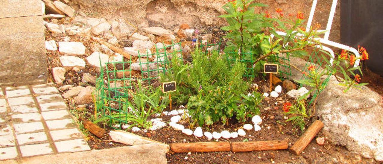 El jardín de E. en la urbanización Monteluz.