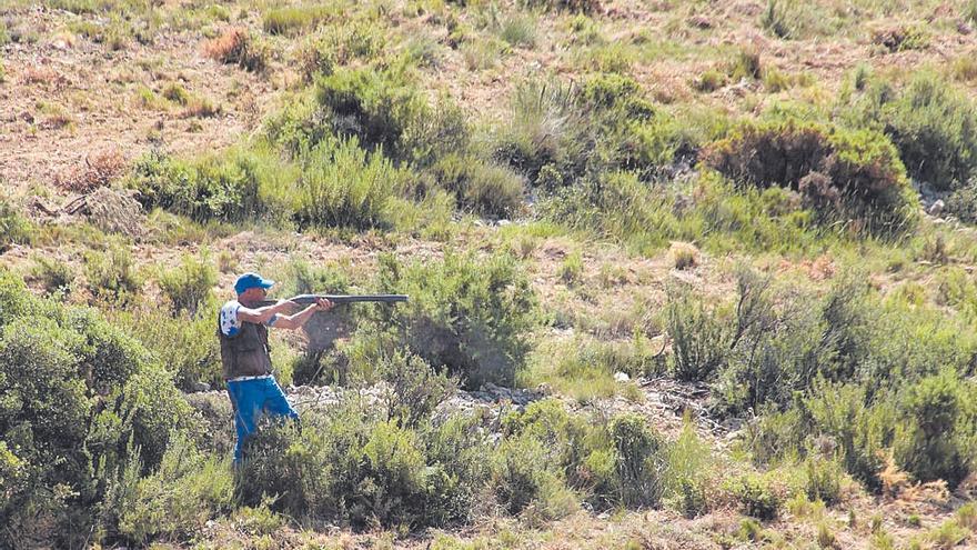 Castellón rompe la tendencia y crece esta temporada en federados de caza