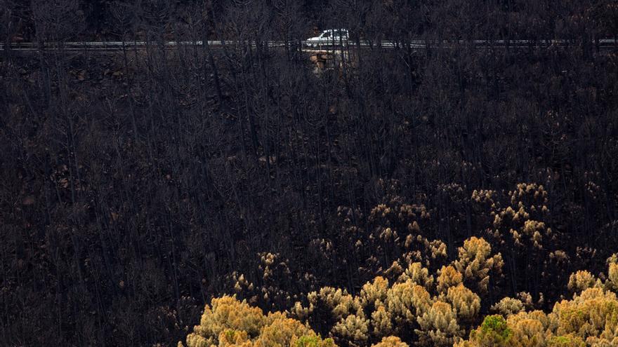 Los bomberos siguen apagando puntos calientes en el incendio de Sierra Bermeja