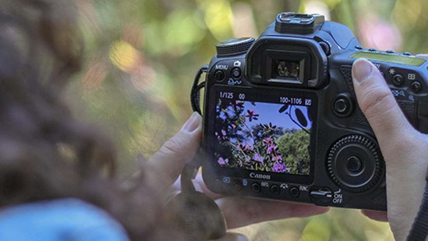 Exposición del Concurso de Fotografía Turística de Cortes de Pallás