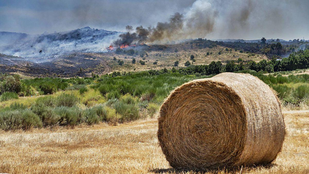 El fuego de Monterrrei, que arrasó superficie agrícola además de forestal, aún seguía activo ayer.