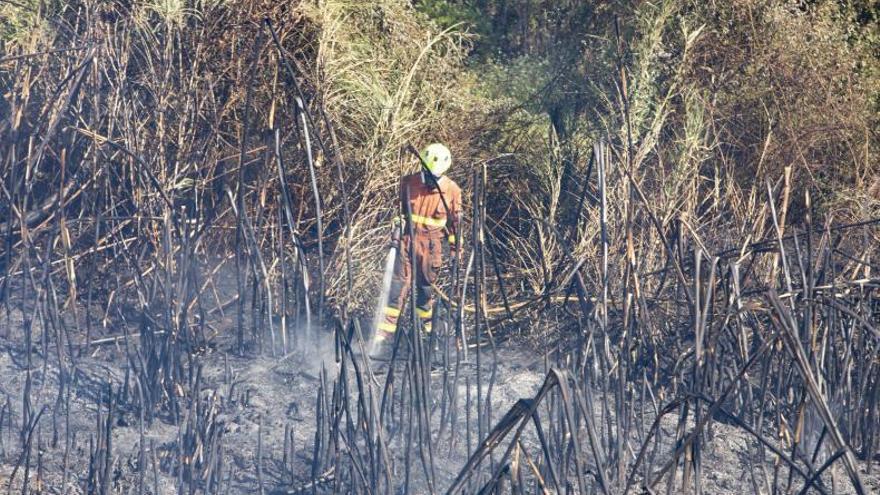 Extinguen el incendio declarado en un terreno forestal de L'Olleria