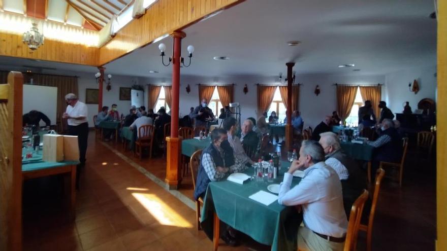 'Patrón San Benito', el nuevo aceite de oliva virgen extra hecho en Campillos