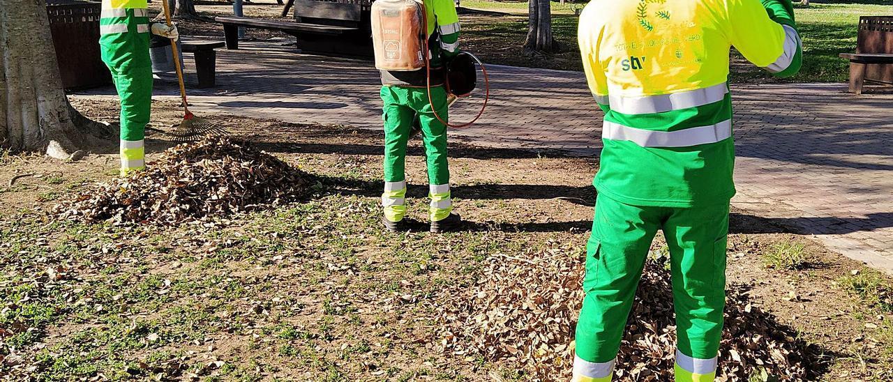Tres de los cinco usuarios del CAI recogen hojas secas en el parque Ausiàs Marc, hace unos días. | LEVANTE-EMV