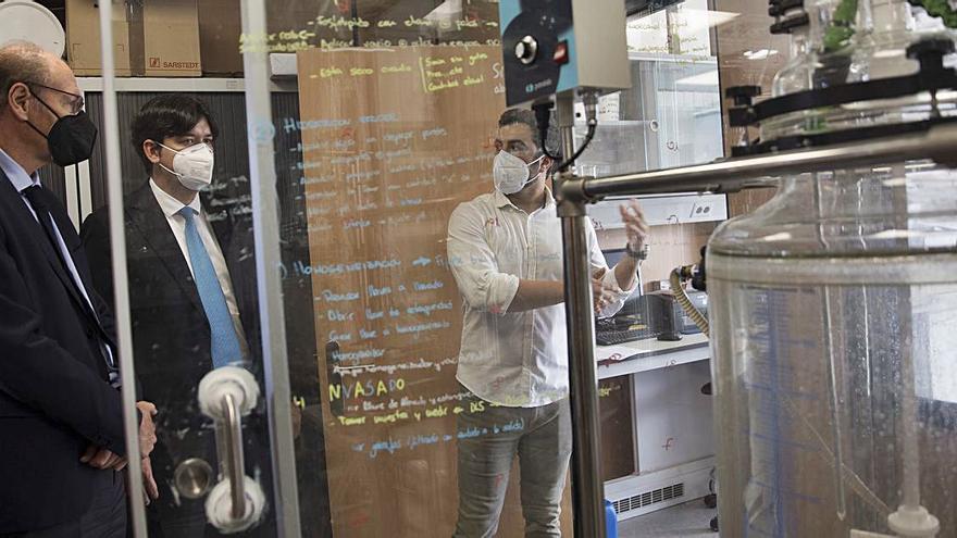Química del Nalón aspira a que su filial Nanovex sea líder en el sector biotecnológico