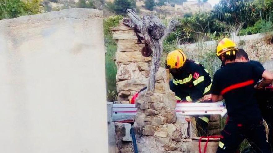 Los bomberos rescatan de un pozo de 20 metros de Benissa a un perro dálmata