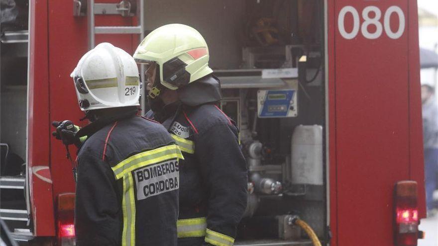 Los bomberos retiran un árbol caído en el Tablero cerca de una guardería