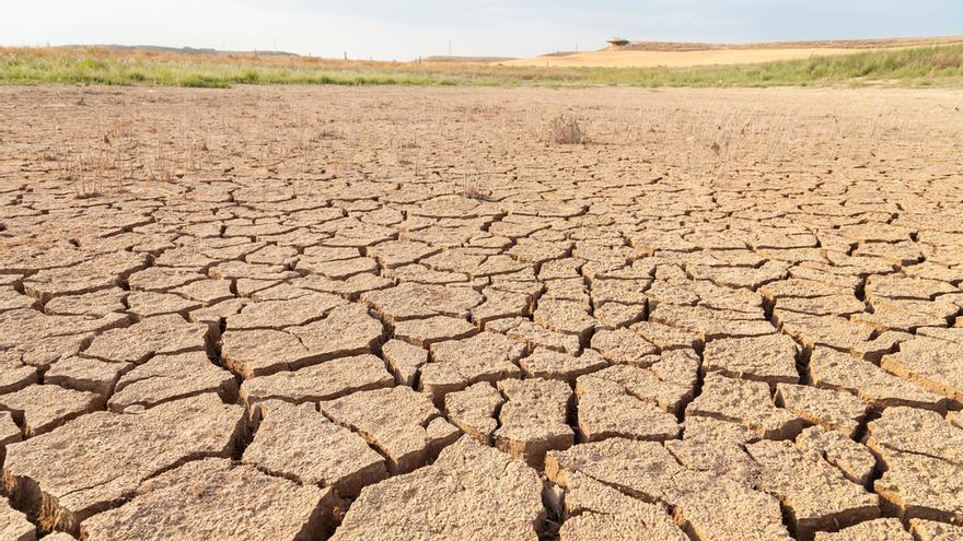 La desertificación en España: un problema añadido que (aún) podemos detener