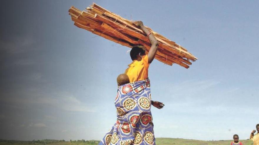 Solidaridad y cooperación para alcanzar los Objetivos de Desarrollo Sostenible