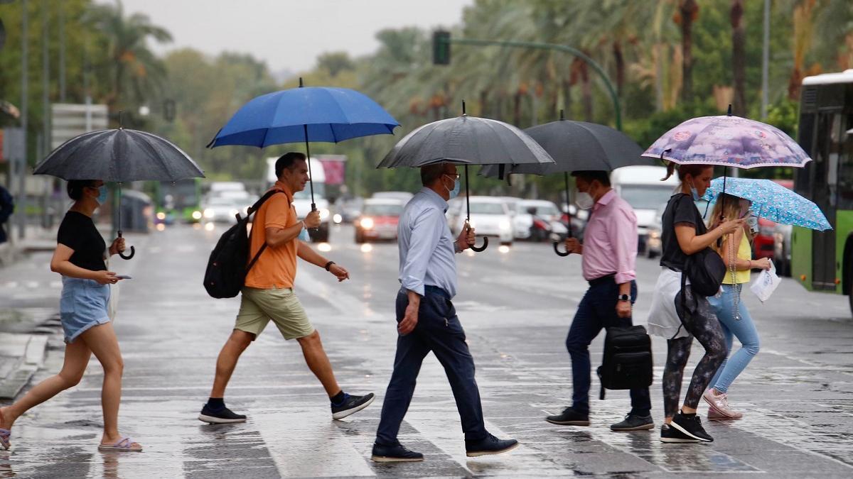 Peatones con paraguas cruzan por un paso de cebra de la avenida Vallellano, este martes.