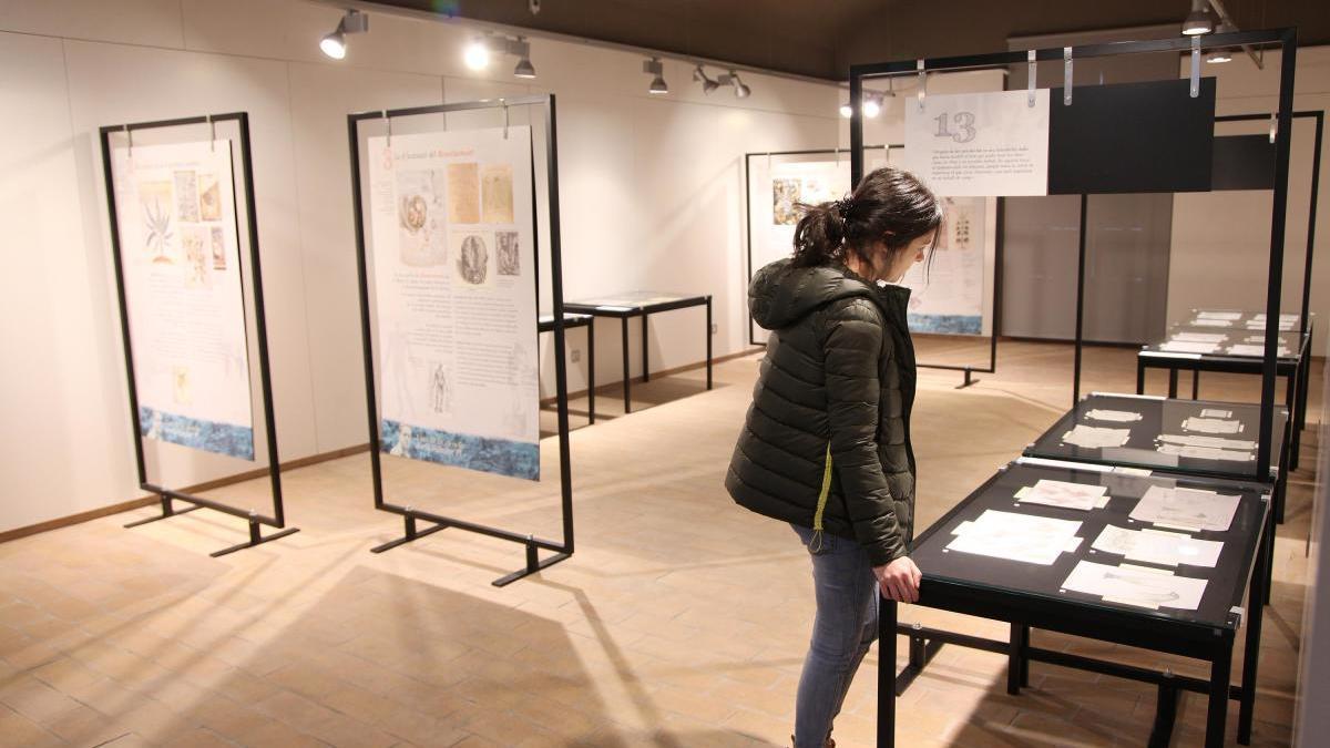 Exposició a l'Ecomuseu Farinera.